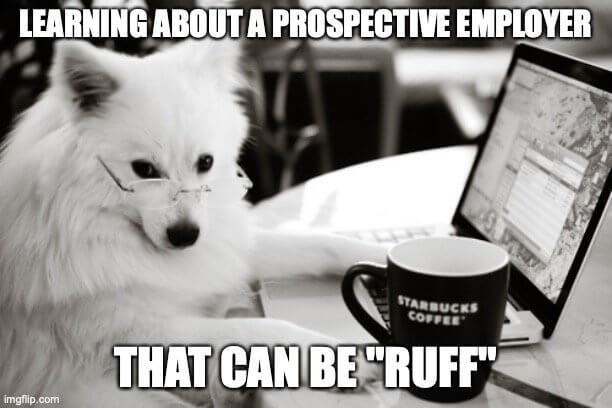 """Learning about a prospective employer - that can be """"ruff"""""""