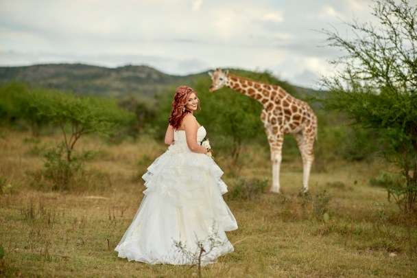 Austin Giraffe Bridal Portrait - Austin Wedding Photographer