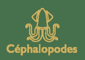 cephalopodes-gold