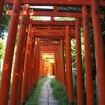 根津神社初詣