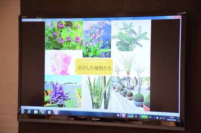 イベント「おうちで楽しむ ポタジェ•ガーデン 〜夏の薬味〜」