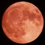 中秋の名月!きれいなお月さまを撮影しました