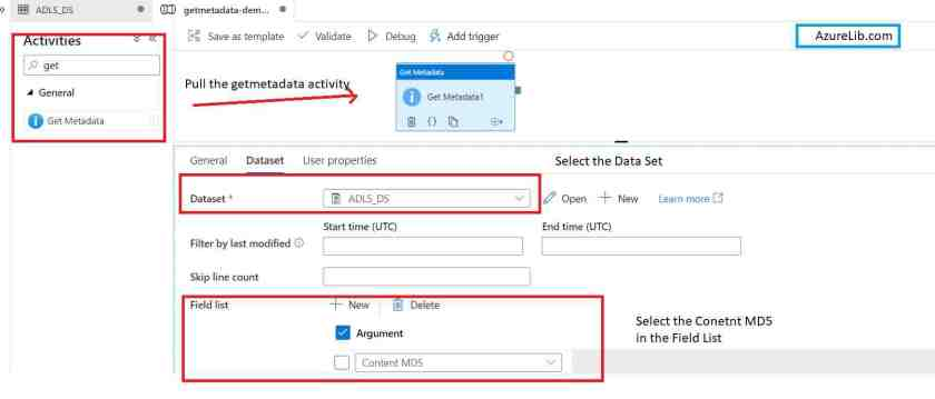 GetMetaData Activity Get the MD5 of File