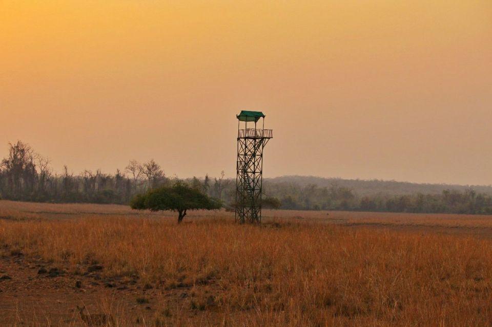 Tadoba National Park Guide2 - Azure Sky Follows