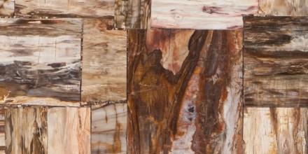 Prexury Retro Petrified Wood
