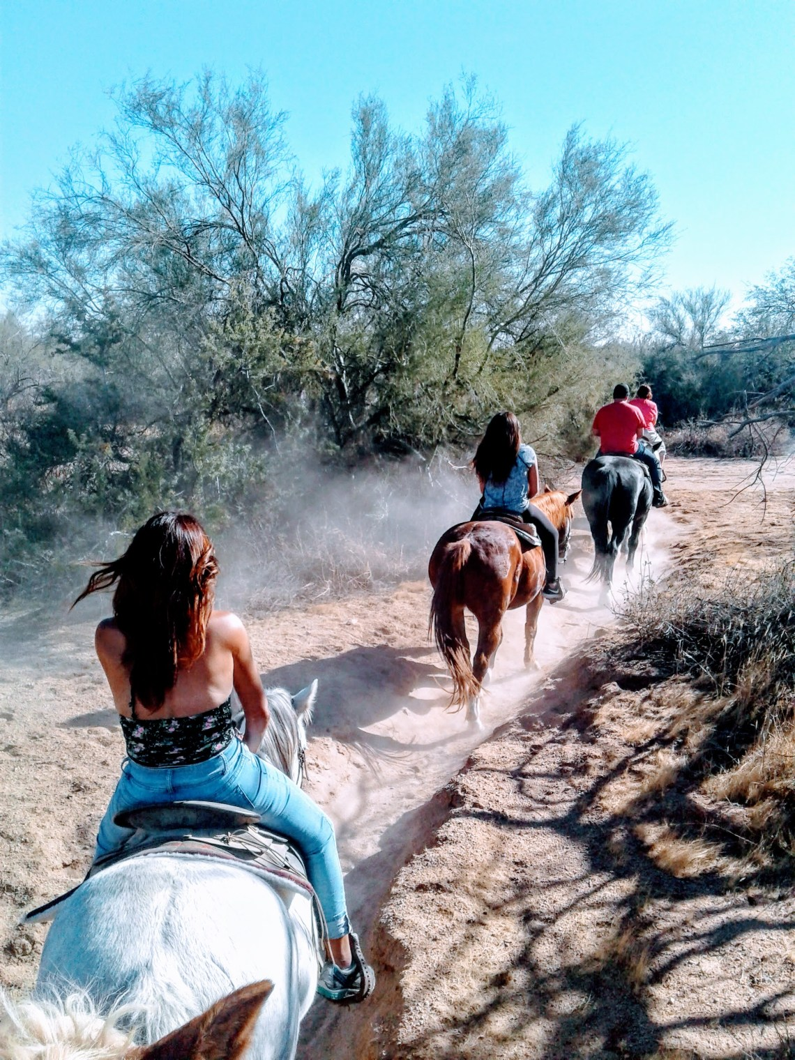 View of family riding horses on dusty trail from the back