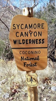 Sycamore Wilderness Canyon Sign