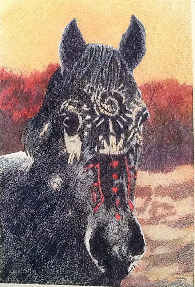 """""""War Horse"""" color pencil"""