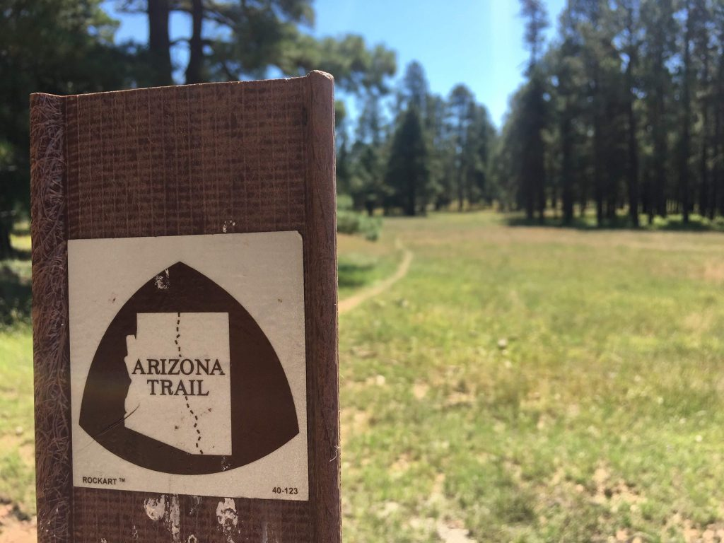 Trail marker that reads Arizona Trail