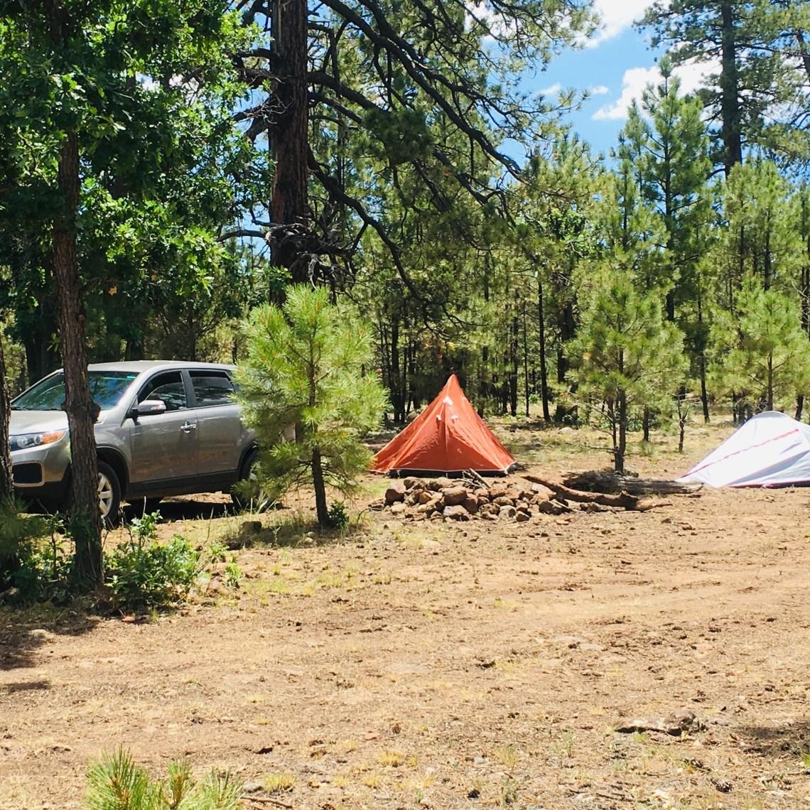 Dispersed campsite off FR-751B, near Blue Ridge Reservoir