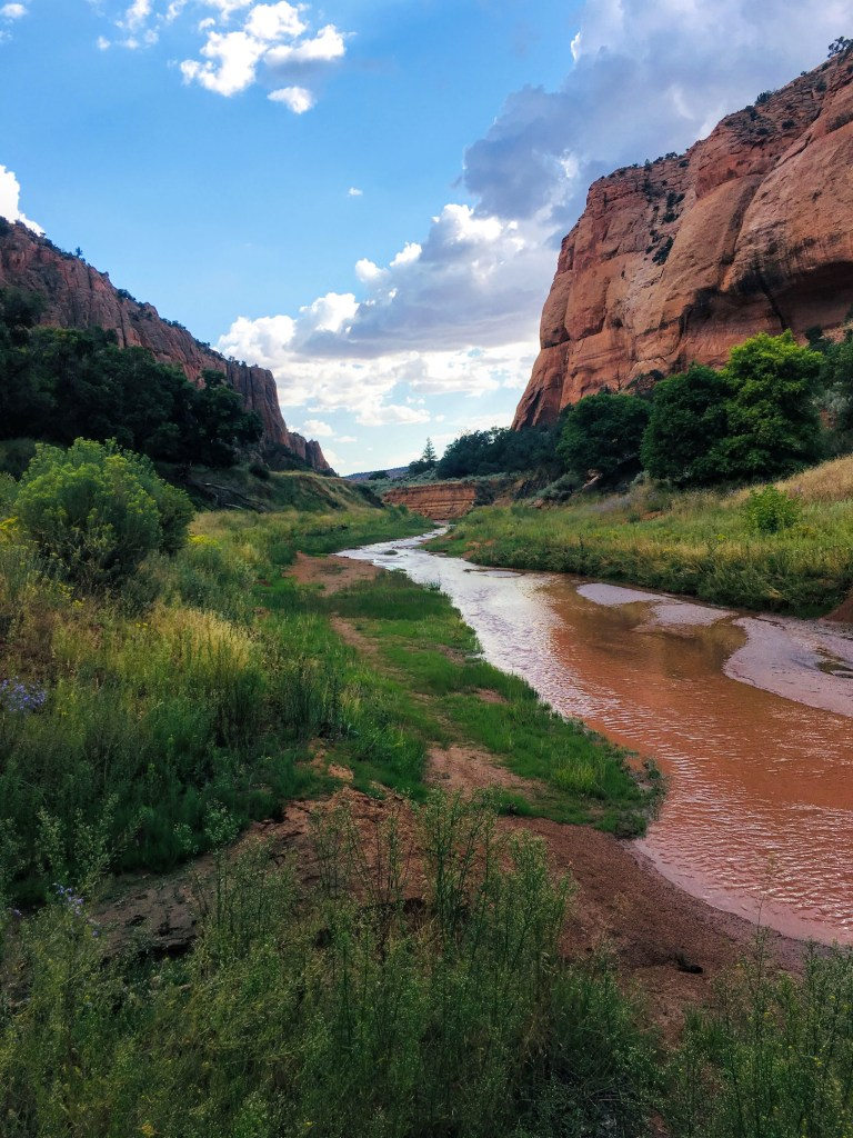 Tranquil stream glides over a stream bed of red sand in the center of a canyon with towering walls