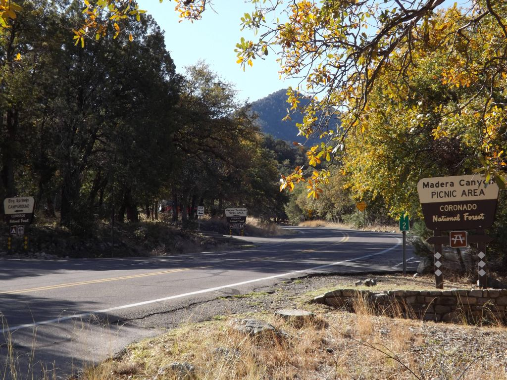 Winding two lane road with sign that reads Madera Canyon Picnic Area