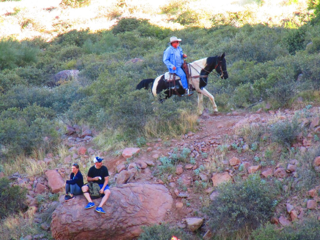 Man riding horse up a desert trail