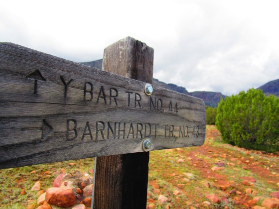 Sign at beginning of Barnhardt Trail No 43