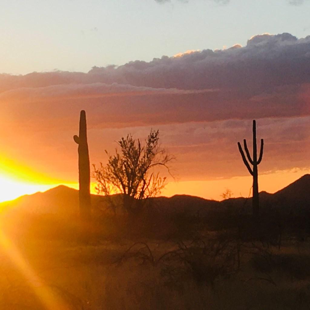 Sun sets over the Sonoran Desert in North Phoenix, AZ