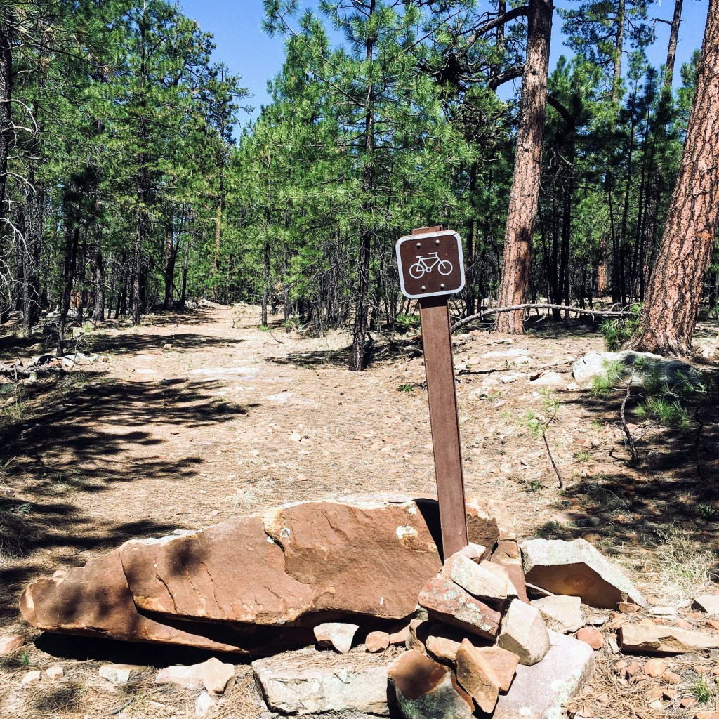 trail with mountain bike trail marker near Willow Springs Lake