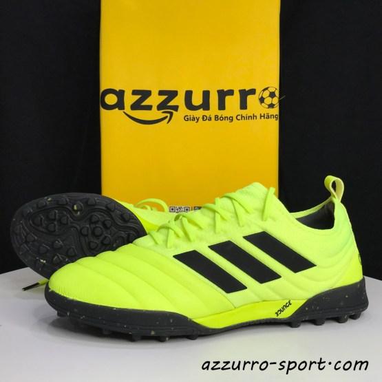 adidas Copa 19.1 TF - Giày đá bóng adidas chính hãng - Azzurro Sport