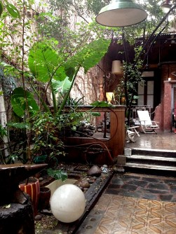Jardín y patio traseros de Querida Elena. Foto