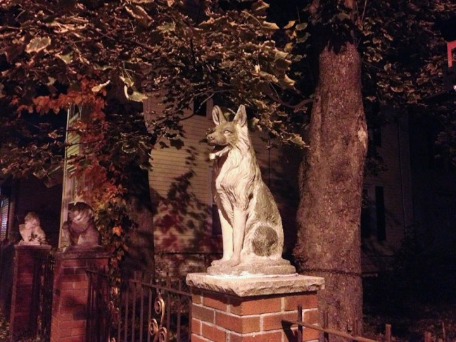 Perro guardián en una casa en Jamaica Plain, Boston. Foto