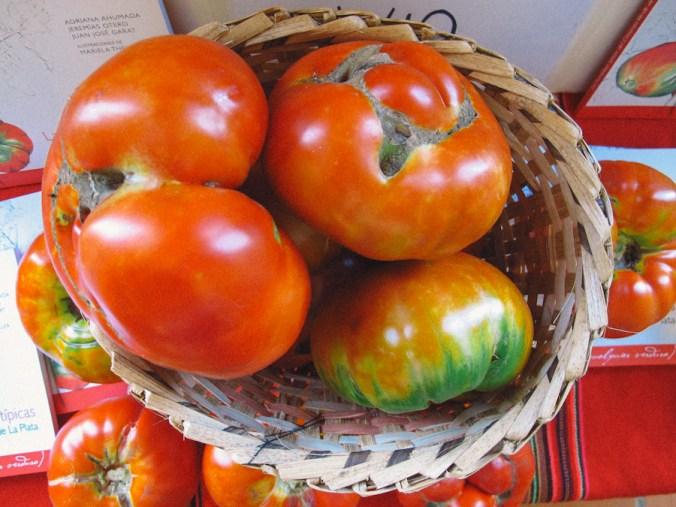 Tomates en la Fiesta del Tomate Platense