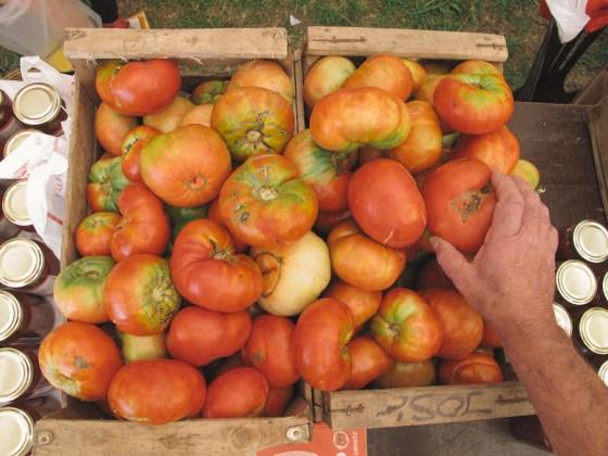 Cajones en la Fiesta del Tomate Platense. Foto