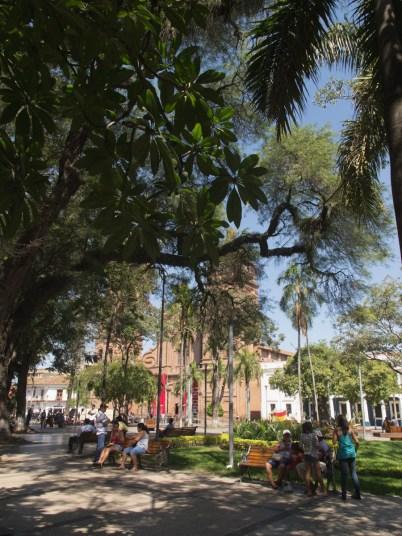 paseo-por-santa-cruz-bolivia--3