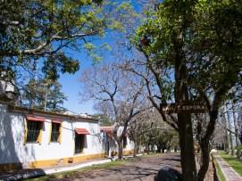 Una calle de la isla paralela a la plaza. Foto
