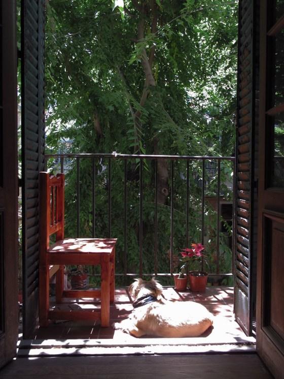Vista hacia el balcón de un departamento en Los Andes. Foto