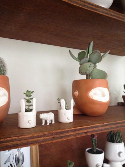 Repisas de Paraná Vivero con macetas de Verde Limbo y Verde Cactus. Foto