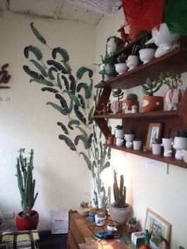 Vista general del pequeño vivero en Galería Patio del Liceo. Foto