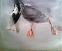 Ente-5 Öl auf Leinwand / 24 x 30 cm / 2002