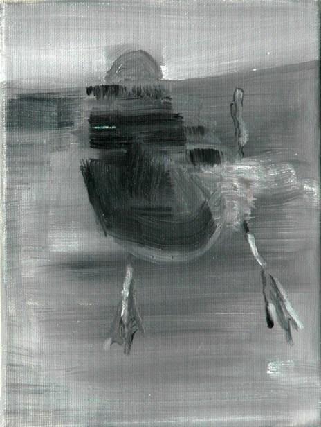 Ente-sw 12