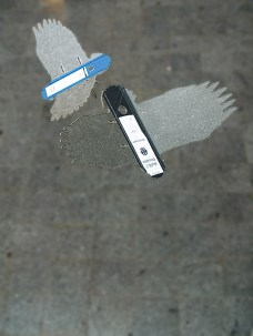 Fallengelassen / Detail / Adler