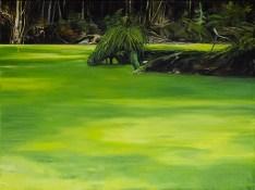 Entengrütze / Öl auf Leinwand / 150 x 200 cm / 2006