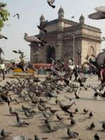 'As the year flies by' at Gateway of India