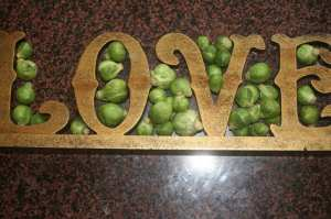 sprouts4
