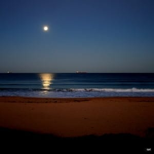 Shelly Beach moonlight