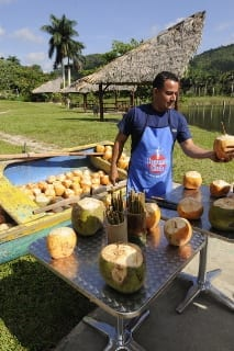 coconut's-water-drinking-1