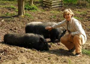 Alexandra with pot bellied pigs, Ant and Dec