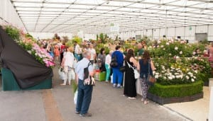 Floral Marquee and plant village