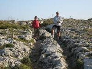 What were the ruts on Dingli Cliffs used for.....