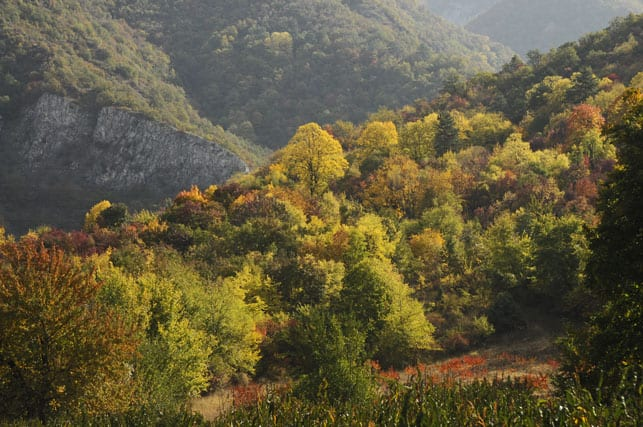 n the Rhodope Mountains