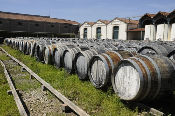 -barrels-in-the-enclos-for-one-year