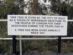 plaque-by-tree