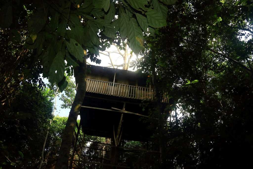 The metre high tree house within the camp site of Kakum NP