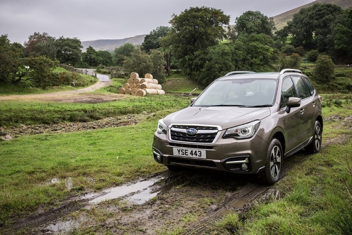 Subaru Outback Medium