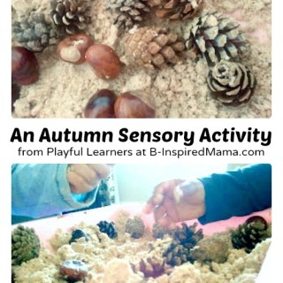 A Simple Autumn Sensory Activity with Scented Cloud Dough