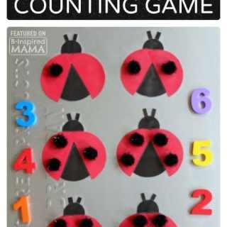Adorable DIY Magnetic Ladybug Counting Game