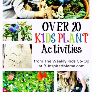 20+ Cool Kids Plant Activities – Perfect for Spring and Summer