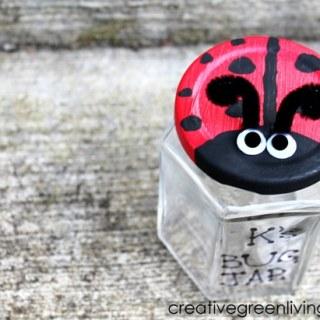 Cute Ladybug Bug Jar Craft [From the Mamas]